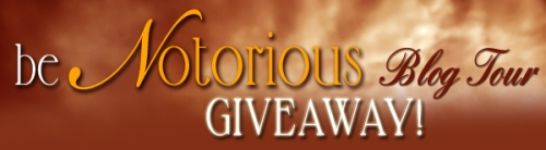 Blog Tour Prizes Banner